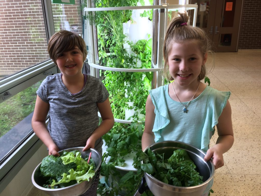School Gardens in Ottawa by Cultivating Cooks